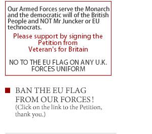 VFB_Petition_image